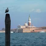 Benátky XI_2013 006