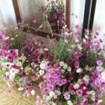 kosiky-plne-kvetin