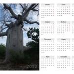 novorocenky a kalendar 2012 001