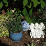 seattle-zahrady-05