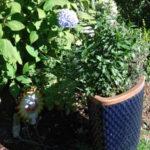 seattle-zahrady-06