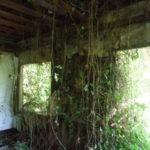 seattle-zahrady-11
