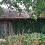 seattle-zahrady-15